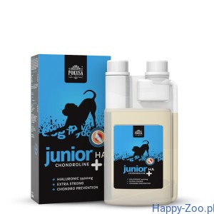 Pokusa Chondroline Junior + HA 500ml