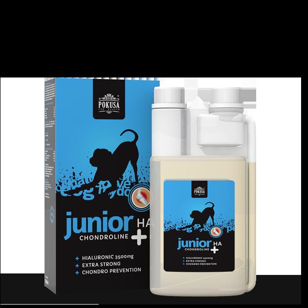 Pokusa Chondroline Junior + HA 500ml